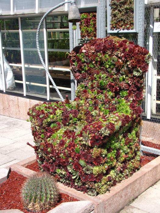 Blumenfahrräder und andere bepflanzte Gebrauchsgegenstände ...
