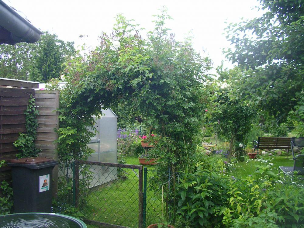 bitte um tipps f r rosenbogenbepflanzung gartenplanung. Black Bedroom Furniture Sets. Home Design Ideas