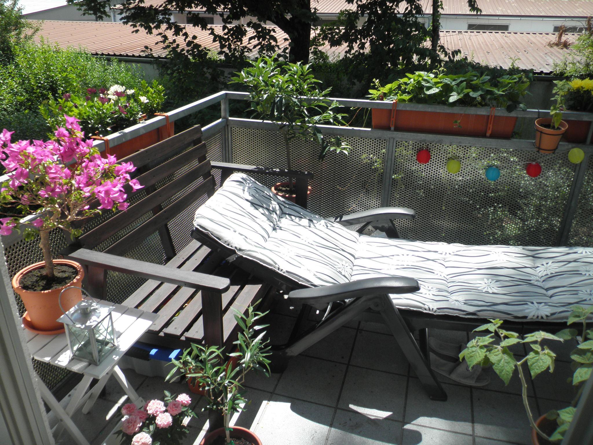 bellamona 39 s balkongarten obst gem seanbau auf balkonien. Black Bedroom Furniture Sets. Home Design Ideas