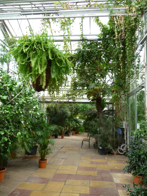 Botanischer Garten Potsdam Teil III