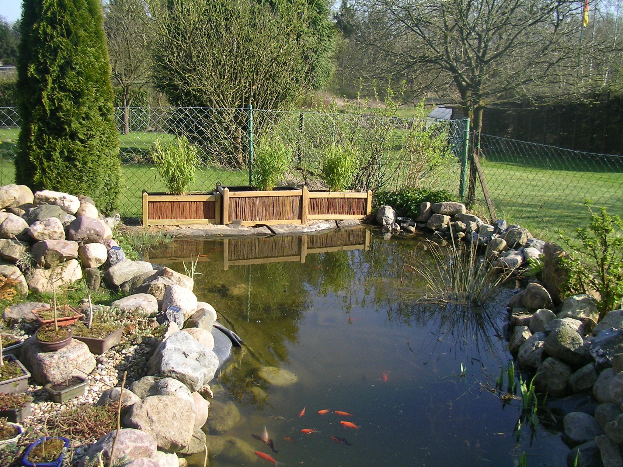 Gartentagebuch von rose23611 willkommen in meinem for Teich einrichten