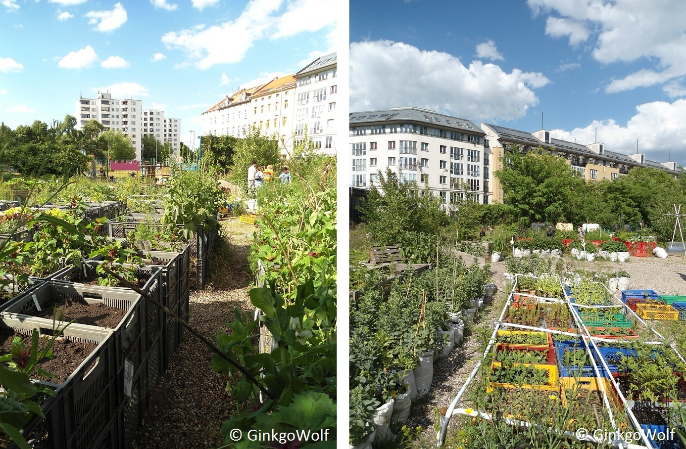 urban gardening prinzessinnengarten berlin kreuzberg. Black Bedroom Furniture Sets. Home Design Ideas